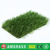 [ألّمي] [هيغقوليتي] عميق - كرة مضرب خضراء عشب اصطناعيّة