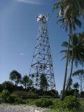 Q235B/Q345b de Materiële Toren van de Wacht van het Horloge