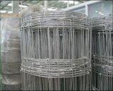 도매에 의하여 길쌈되는 철사 담 또는 Lowe 돼지 철사 검술하거나 농장 가드 담