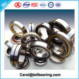 Zylinderförmiges Rollen-Axiallager, paralleles Rollenlager
