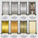 Elevatore residenziale Dkv400 della casa della villa del passeggero di stile LMR della fascia d'acciaio