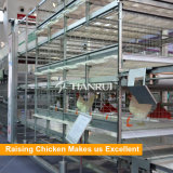 La volaille automatique mettent en cage pour le grilleur soulevant le matériel de ferme avicole de poulet
