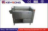 Machine de balai de lavage de fruits et légumes de jet d'eau