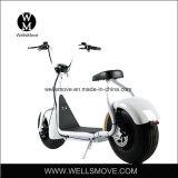 Citycoco/Seev/Wolfの脂肪質のタイヤの電気スクーターかHarleyの電気オートバイ