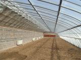 Serra solare del film di materia plastica nel posto di temperatura insufficiente