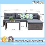 Insieme di vimini stabilito del sofà di combinazione del sofà della mobilia di progetto dell'hotel