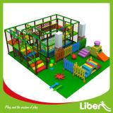 Cour de jeu d'intérieur de Liben et stationnement d'intérieur de tremplin