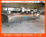 Máquina de la limpieza de la burbuja para el Lactuca de los vehículos del vástago Sativa