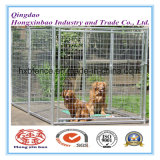 Casa segura do animal de estimação ao ar livre do engranzamento de soldadura/gaiola do cão/canis galvanizados do cão