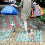 Faltendes Haustier-Haus-Schlafenzelt