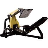 Máquina libre de la prensa de la pierna de los nombres del equipo de la gimnasia del peso (FW09)