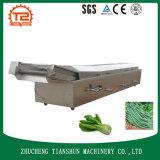 Vegtablesのための装置の白くなる機械を調理するセリウム