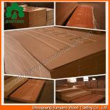 Peau de trappe de la mélamine HDF/peau en bois naturelle de trappe de la trappe Skin/MDF de placage