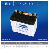 Высушите порученную батарею автомобиля 12V100ah