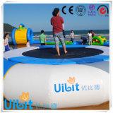 Bouncer inflável do projeto da água dos Cocos para os esportes de água LG8036