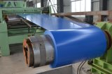 Vorgestrichene galvanisierte beschichtete Stahlspule des Blatt-(PPGI) Farbe