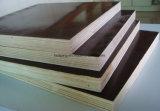 la madera contrachapada de 18m m/la película hechas frente película negra de Brown hizo frente a la madera contrachapada