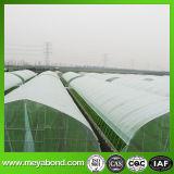 100% 새로운 HDPE 플라스틱 온실 반대로 곤충 그물 또는 곤충 증거 그물