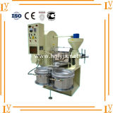Machine chaude de presse d'huile de table de vente