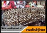 Balustrade extérieure de pêche à la traîne de balustrade d'acier inoxydable
