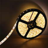 2835 tira flexible blanca de 120LED 5m m 12V 5m/Reel LED