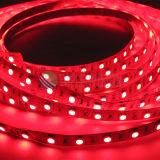 Indicatore luminoso di striscia flessibile di alta qualità SMD5050 LED 60LEDs/M 12V, CC 24V