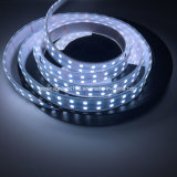 Striscia di RGBW LED per visualizzazione