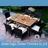 La mobilia del rattan che pranza la conversazione stabilita imposta la mobilia del giardino