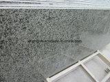 Granit vert Tiles&Slab, granit vert de la Chine pour le dessus de Countertop&Vanity