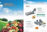 Spinat-Mangofrucht-Reinigung und Reinigungs-Maschinen-Preis