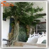 Albero di Banyan artificiale della vetroresina dell'interno della decorazione