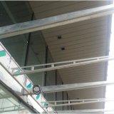 Techo G-Shaped suspendido metal de la tira con la ISO para decorativo exterior