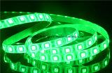Indicatore luminoso di striscia eccellente di luminosità SMD 5050 LED con il doppio circuito