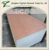 Chapas de madera de álamo de Shandong alma contrachapada de madera Bintangor Comercial