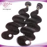 Волосы 8A Малайзиец Девственница Remy Человеческие волосы Компания Fabulours