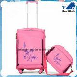 (Lanjing-49)流行の試験トロリー箱の荷物のスーツケース