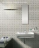 Parete del mosaico e mattonelle di pavimento di marmo naturali (FYSG047)