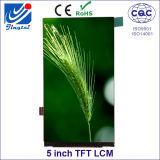 No modelar ningún Jtd050228c1 5.0 '' módulo de TFT LCD de Jingtai