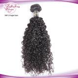 Человеческие волосы утка 100% волос девственницы красотки бразильские курчавые Unprocessed соткут естественный цвет