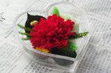 Цветок ткани гвоздики касания высокого качества одиночный сохраненный реальный