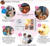 Chambre de poupée en bois de Dream DIY de princesses avec l'horloge