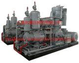 Compresor de aire sin aceite refrigerado por agua del animal doméstico de la serie 10-25nm3/Min (135.0cfm) de Lw Botella-Que sopla