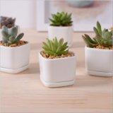 Porcelana de cerâmica branca de cerimônia de personalidade Flowerpot