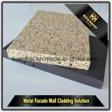 Revêtement en aluminium extérieur de revêtement de panneau de mur de prix usine de la meilleure qualité