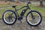 7개 속도 뚱뚱한 타이어 산 전기 자전거