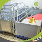 Produção quente da venda para a caixa de parada da exploração agrícola de porco