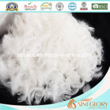 El pato puro del rectángulo de la cubierta del algodón de la Anti-Alergia abajo empluma la almohadilla
