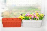 Potenciômetro de flor plástico da venda por atacado quente da venda