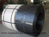Brin en acier galvanisé/fil d'acier galvanisé/fil de fer