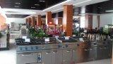 Friteuse électrique industrielle à vendre Fryer for Wholesale